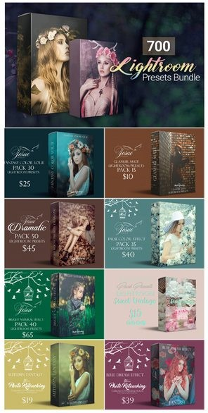 Inkydeals 700 Amazing Lightroom Presets Bundle / Specification