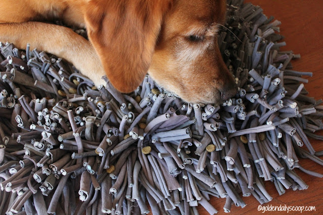 paw5-wooly-snuffle-mat-enriching-dogs-mealtime