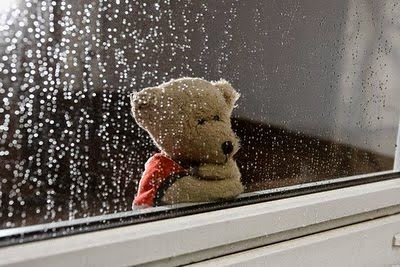 Love-Failure-sad-Teddy-waiting-rain-glass-photography-image.jpg