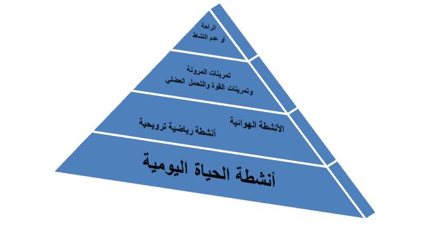 هرم النشاط البدني ومستوياته