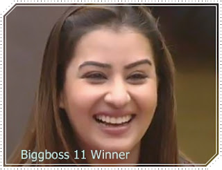 shilpa shinde, bigg boss 11 winnner