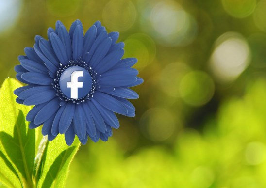 flower on facebook