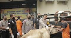 Polres Batang Berhasil Ungkap Kawanan Pencuri Sapi Di Warungasem