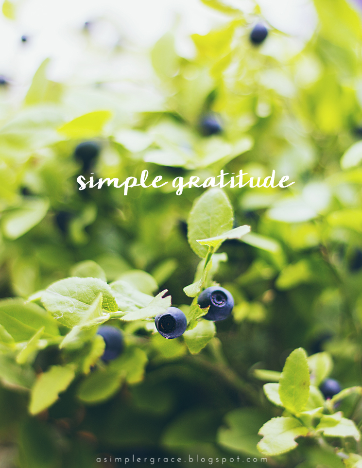 Simple Gratitude | 32 - A Simpler Grace - A weekly series focusing on practicing gratitude.  #gratefulheart #gratitude #feelingthankful