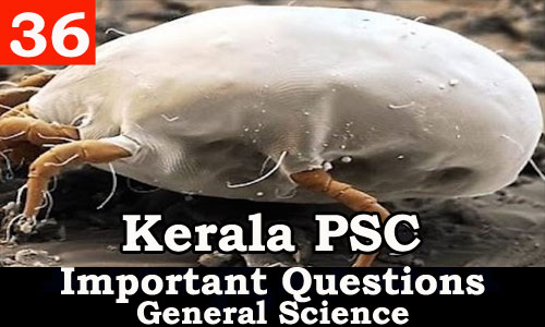 Kerala PSC - Important and Expected General Science Questions - 36