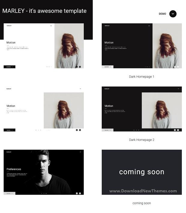 Portfolio Agency Template