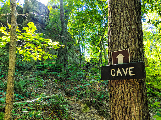 sign nailed to tree indicating direction of the cave