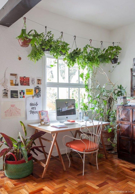 Cómo decorar tu casa con plantas, la mejor opción por dentro y por fuera