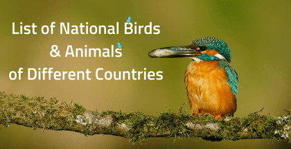 List of National Birds and Animals of Different Countries