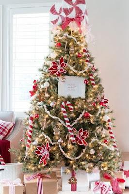 Pohon Natal Cemara