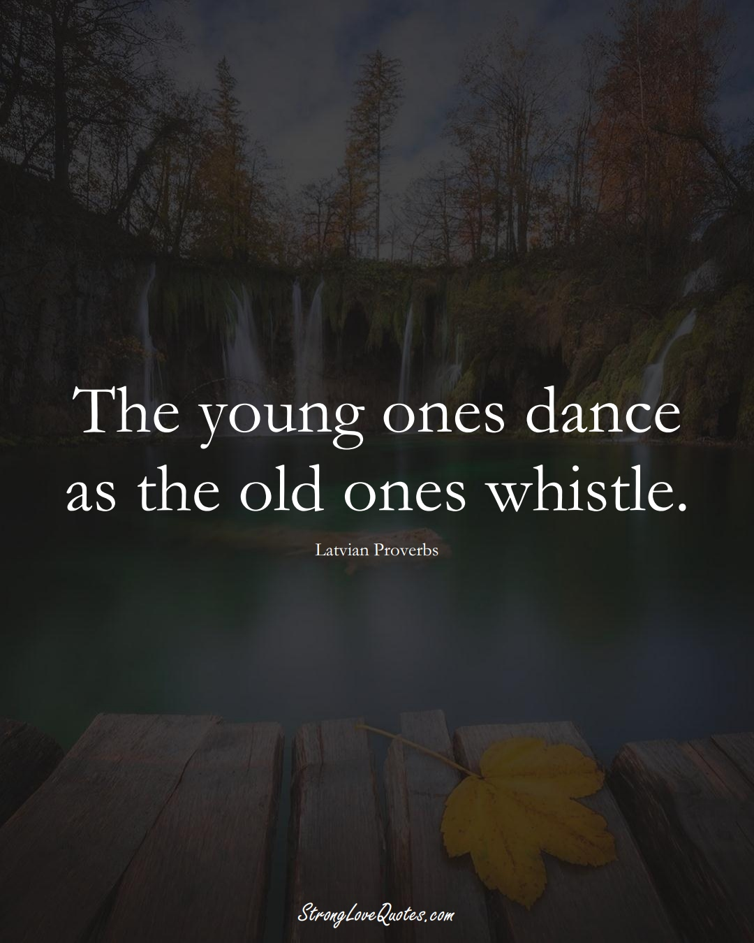 The young ones dance as the old ones whistle. (Latvian Sayings);  #EuropeanSayings