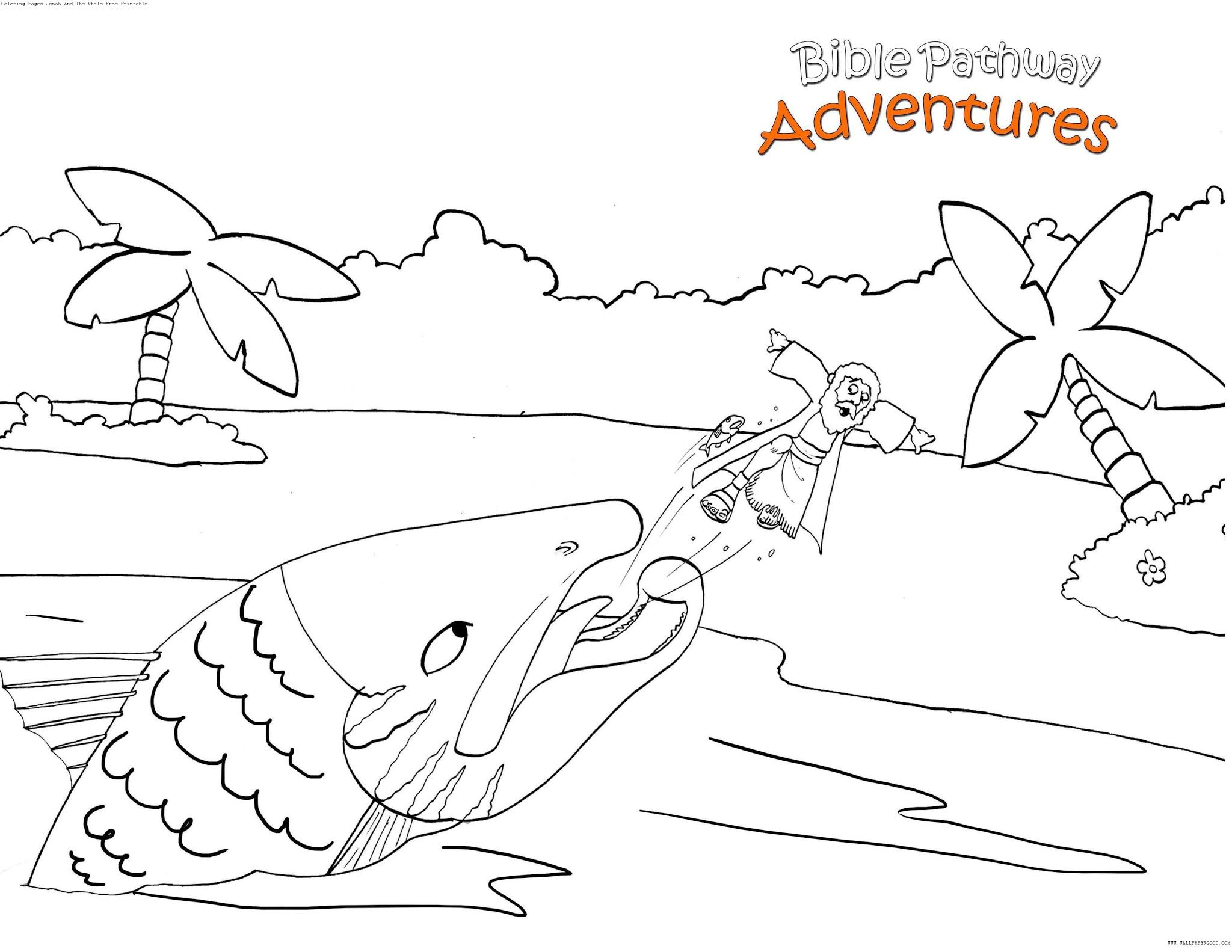 free coloring pages jonah and the whale