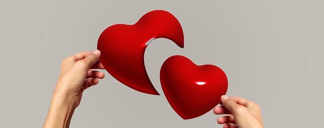 Novel : Saling Mencintai Tapi Tak Bisa Memiliki
