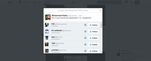 ScreenShot Aplikasi Pengintip Profil di Twitter