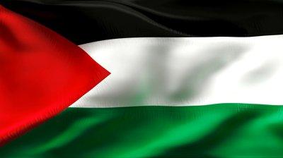 Pembentukan Kohor RI di Palestina Wujud Pelaksanaan Amanat Pembukaan UUD