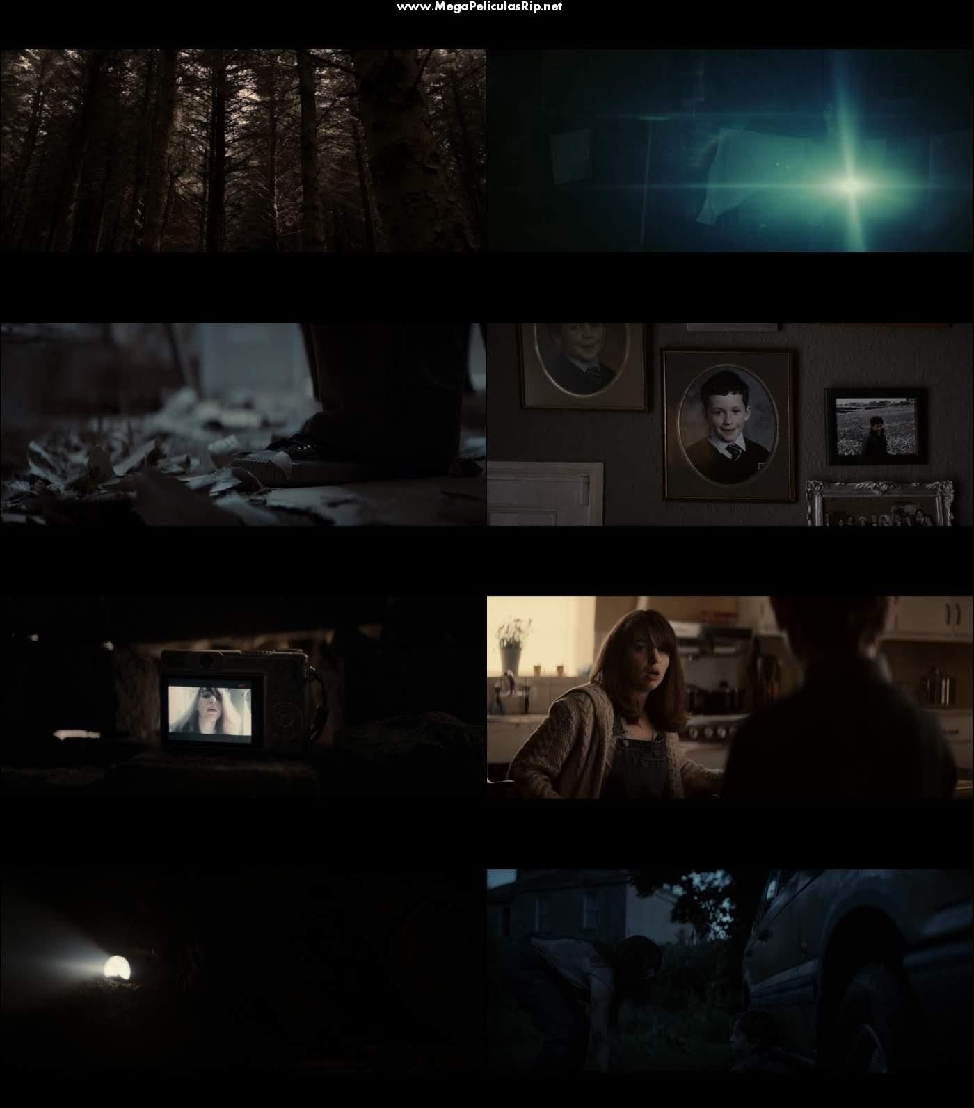 El Bosque Maldito 1080p Latino