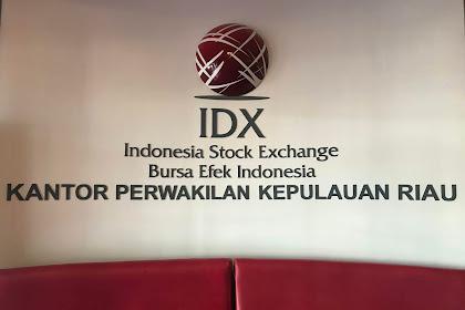 Pengalaman Pertama Belajar Saham di Bursa Efek Indonesia Perwakilan Kepri
