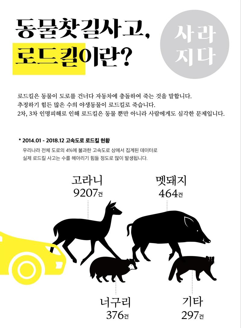 동물 찻길사고 예방 위한 홍보 공익활동(캠페인) 개최