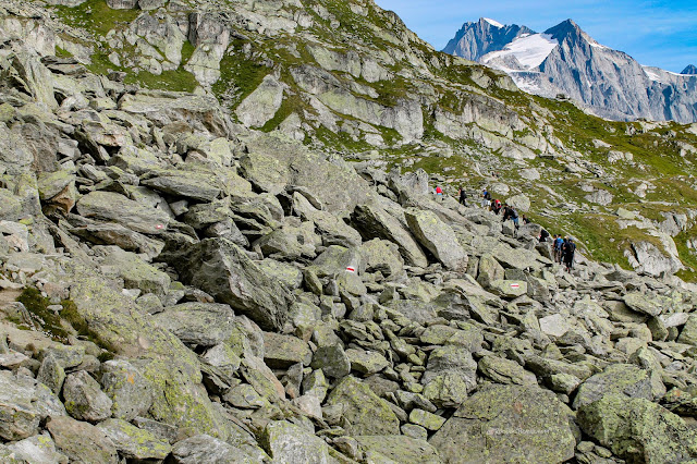 Geology travel Alps Switzerland Aletsch glacier Fiesch Laax hiking mountains ice copyright RocDocTravel.com