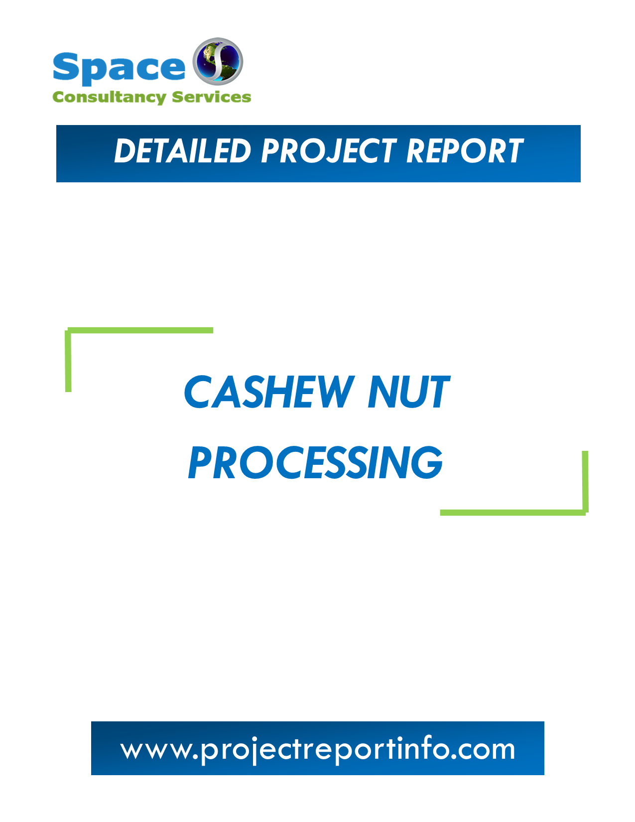 Project Report  on Cashew Nut Processing
