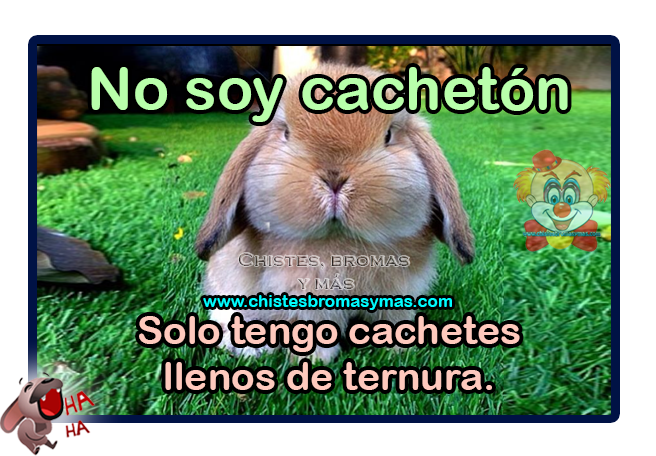 Chistes gráficos, Chistes de animales,