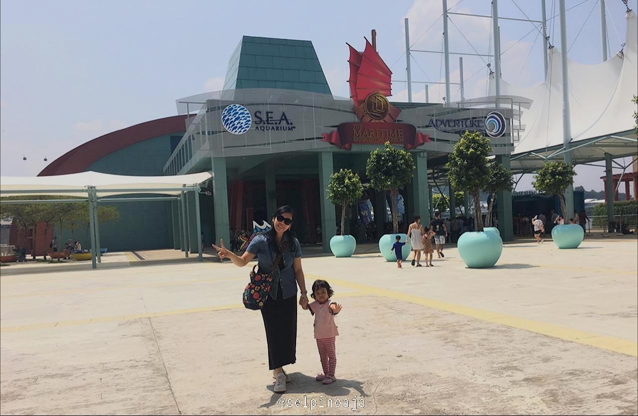 Fun Day At Sea Aquarium Singapore Diary Of Shalom Audrey Dewasa Sentosa Island Ini Sangat Luas Dan Variasi Dari Jenis Binatang Lautnya Juga Bermacam Macam Kami Dibuat Kagum Dimanjakan Dengan Pemandangan