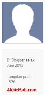 Cara Melihat List Blog Sendiri | Melihat Profil Admin Blogger