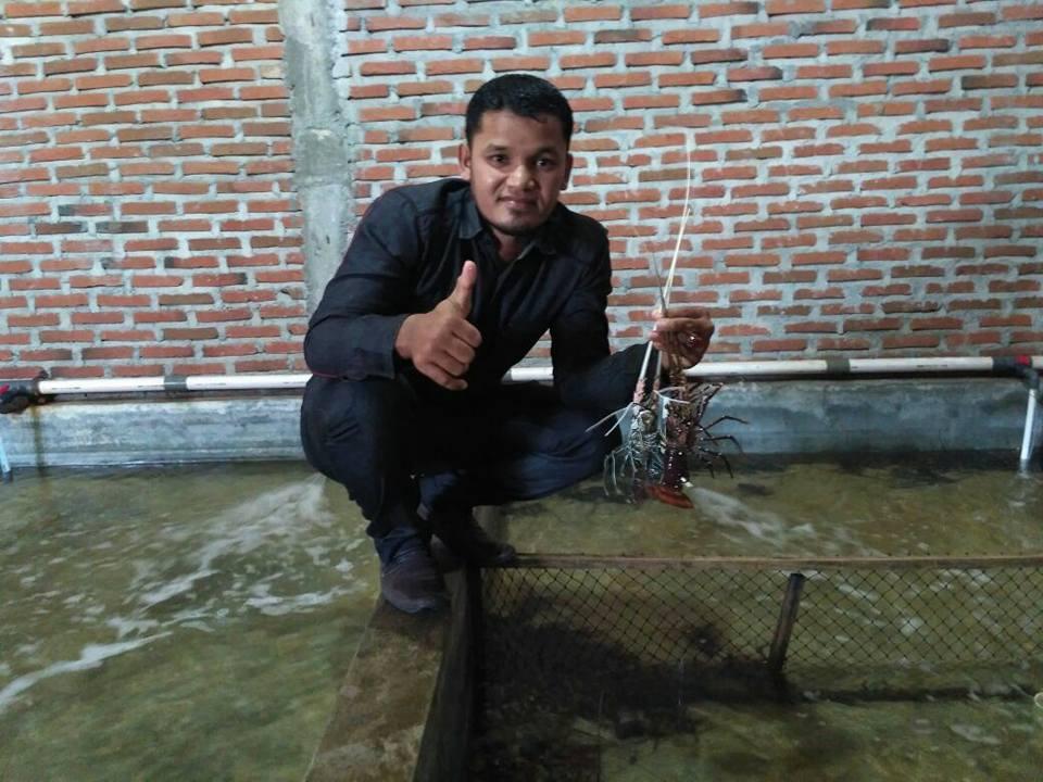 LPD Salurkan Bantuan dan Bina Kelompok Usaha Lobster Ulele Banda Aceh Bantuan dari BRA