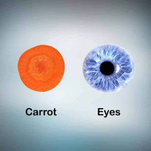 carrot-for-eyes