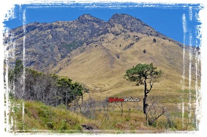 Porter Sindoro, Paket Pendakian Gunung Sindoro Sumbing dan Prau