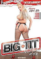 Big Tit Pin Up P.O.V. xXx (2014)