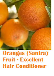 Health benefit of orange santra fruit Oranges (Santra) Fruit - Oranges (Santra) Fruit - Excellent Hair Conditioner