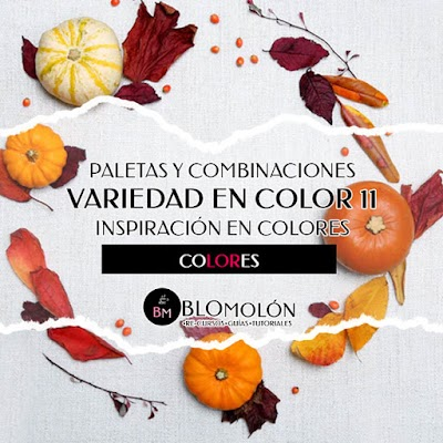 Variedad En Color 11 Paletas
