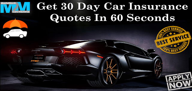 30 Day Car Insurance Quote for Young Driver