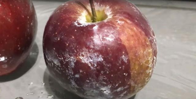 Buah Apel ini Disiram Air Panas, yang Terjadi Bikin NGERI