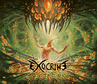 "Exocrine - ""Ascension"""