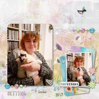 https://blog-photos-chats-du-bocage.blogspot.com/2020/05/hommage-bettina.html