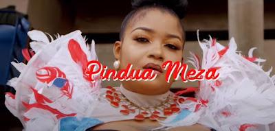 Pimdua Meza by shilole