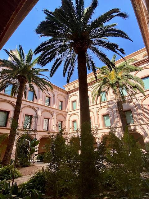 Courtyard of palm trees in the Museo de Bellas Artes, Valencia, Spain