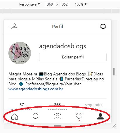 instagram-perfil
