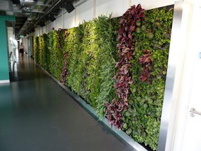 Jasa Tukang taman Malang Pembuatan vertical garden
