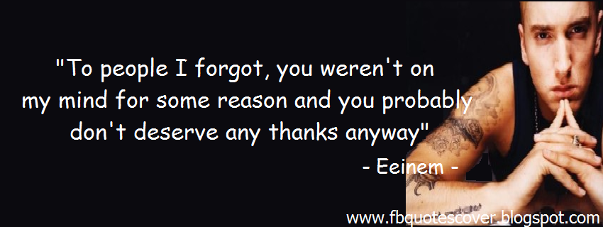 eminem quotes i dont care if your - photo #18