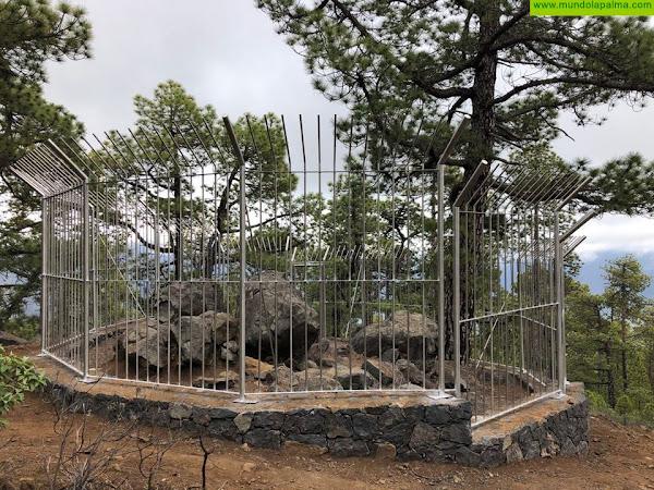 Transición Ecológica protege dos yacimientos arqueológicos con petroglifos de La Caldera de Taburiente