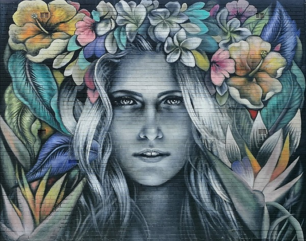 Street Art in Manly by Shannon Crees