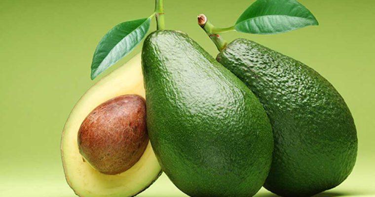 Abacate: benefícios para a saúde