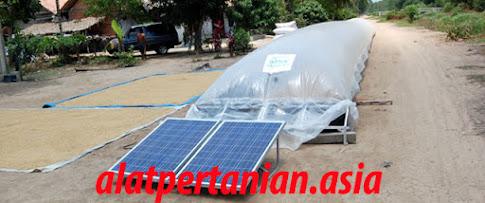 solar dryer padi
