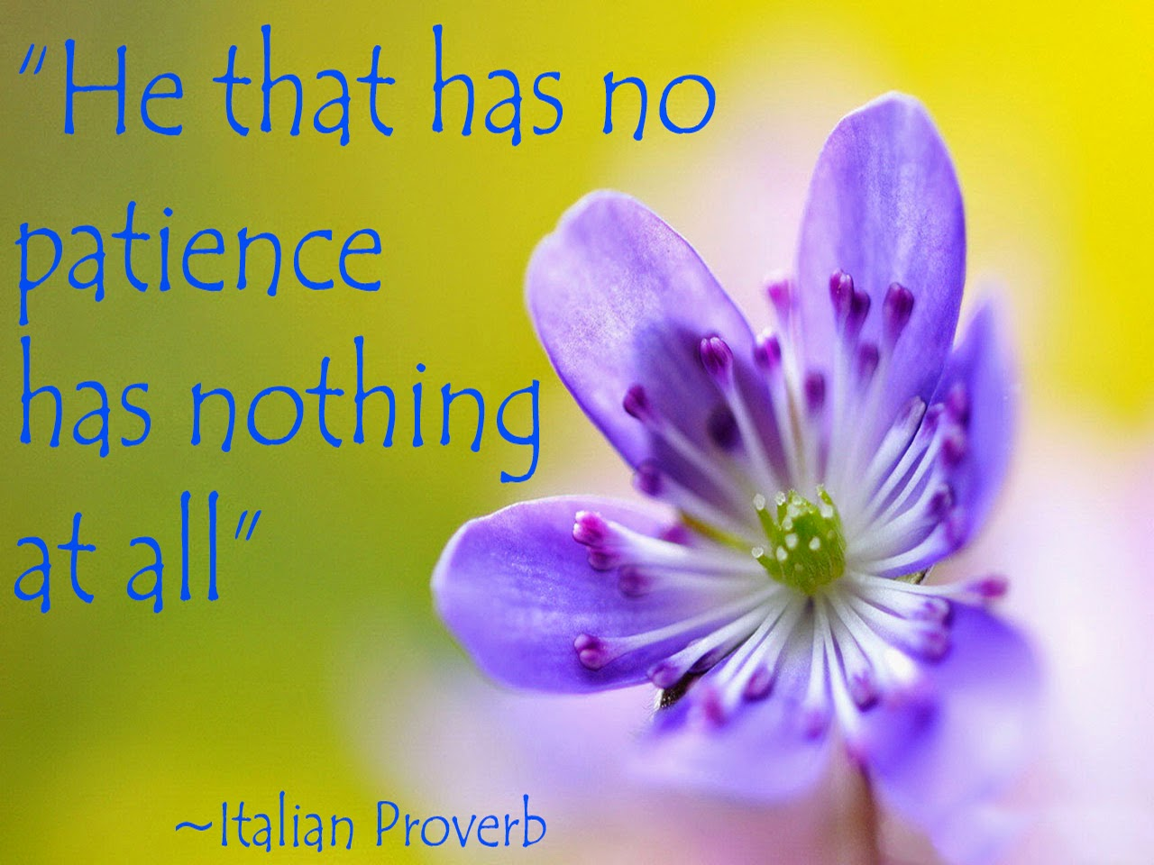 Inspirational Quotes About Patience And Tolerance - Poetry ...
