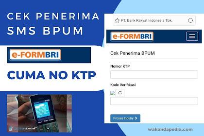 Panduan Cek Penerima BPUM UMKM Rp 2,4 Juta Online Melalui e-form BRI, Login di eform.bri.co.id/bpum