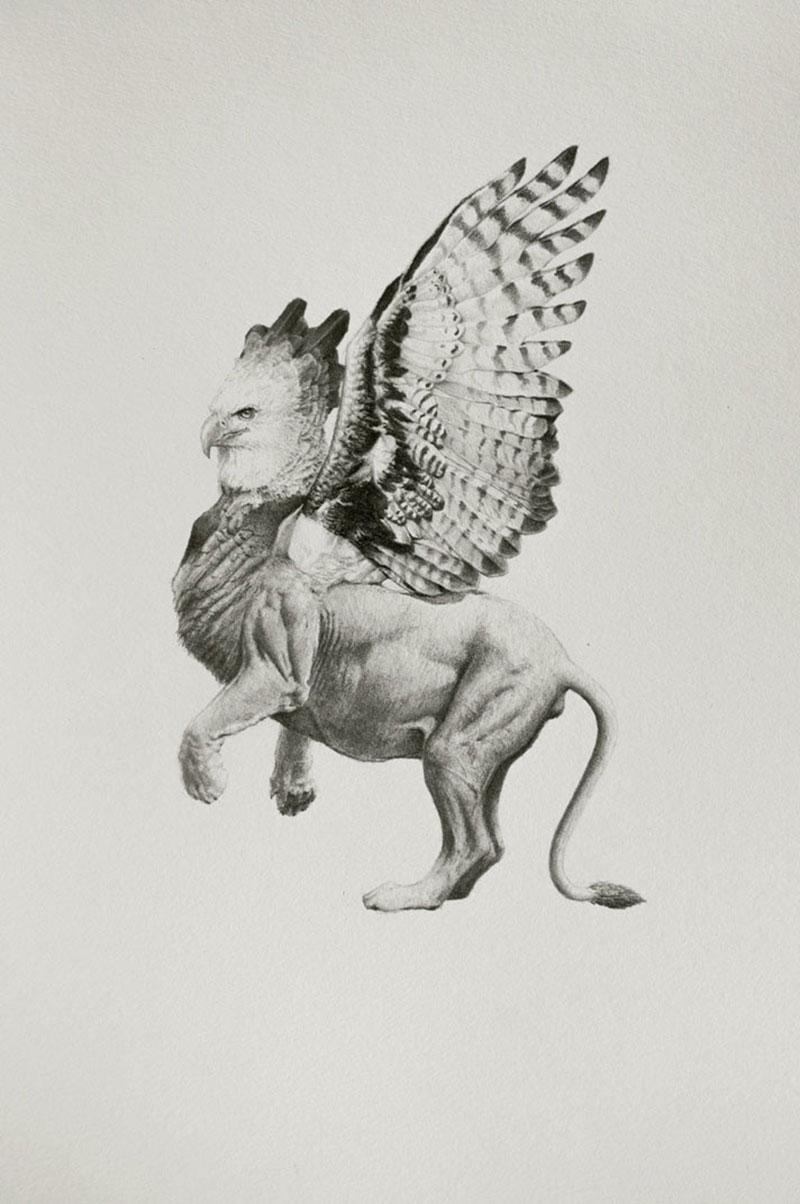 Mateo-Pizarro-06 Bestiary of Improbable Animals III: Drawings by Mateo Pizarro Design