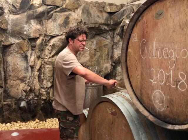 Wine Witness